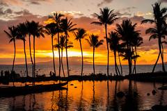 Keep Yourself Warm (Thomas Hawk) Tags: grandwailea hawaii maui wailea waldorfastoria waldorfastoriagrandwailea beach clouds humuhumu humuhumunukunukuapuaa palmtree restaurant sunset tree fav10 fav25 fav50