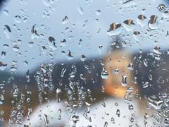 Dia lluvioso de otoo (Miguel_Linares) Tags: miguellinares manchareal jaen andalucia fz200 gotas lluvia otoo