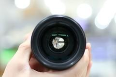 Lens (Francieli Feltrin) Tags: macro lens