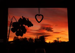 My View..x (Lisa@Lethen) Tags: sunset window frame weather nature clouds silhouette heart orchid