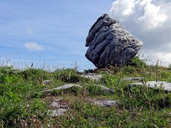 Burren National Park, County Clare, Ireland(4) (Anne O.) Tags: 2014 clare countyclare irland holeofsorrows burren poulnabronedolmen panoramio6954847110288941