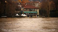 Torino (10) (cattazen.com) Tags: alluvione torino po esondazione parcodelvalentino murazzi pienadelpo cittàditorino turin piemonte