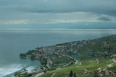 Rebberge des Lavaux mit Genfersee - Lac Léman im Kanton Waadt - Vaud der Schweiz (chrchr_75) Tags: chriguhurnibluemailch christoph hurni schweiz suisse switzerland svizzera suissa swiss chrchr chrchr75 chrigu chriguhurni albumzzzz150816ausflugsolothurnpully hurni150816 august 2015 albumzzz201508august genfersee lac léman alpensee see lake sø järvi lago 湖 landschaft landscape natur nature albumgenferseelacléman wasser eau water lavaux weinbaugebiet rebberg rebberge kantonwaadt kantonvaud waadt vaud unesco world heritage welterbe waadtland vaudois westschweiz romande romandie