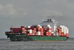 Balthasar Schulte (Bernhard Fuchs) Tags: water boat nikon ship ships cargoships vessel cargo elbe schiffe cuxhaven schulte containerschiff frachtschiff containerschiffe frachtschiffe