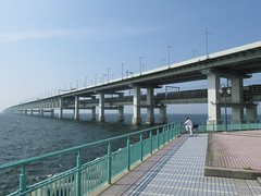1629 Taking in the View (mari-ten) Tags: park bridge sea people nature bicycle japan railway walkway freeway 日本 osaka expressway kansai rinku izumisano roadway 自転車 eastasia 2014 高速道路 りんくう osakabay 大阪府 大阪湾 関西地方 201407 泉佐野市 kansaiairportbridge 関西空港連絡橋 20140721