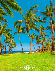 Grand Anse (TECHER R.) Tags: sun beach reunion canon island eos soleil dom ile grand palm plage romain runion sud cocotier 6d le anse 974 ledelarunion techer airynaka techerromain