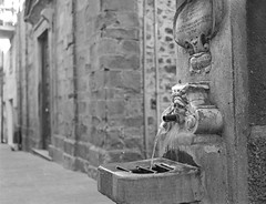 Fontana di Gragnola Chiesa (Morzilla2015) Tags: film:iso=200 rolleisuperpan200 film:brand=rollei film:name=rolleisuperpan200 developer:brand=photographersformulary photographersformularytfx2 developer:name=photographersformularytfx2 filmdev:recipe=10438