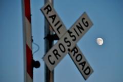 W&LE Crossing Sign Zuercher Road Kidron 11/22/15 (Poker2662) Tags: road sign crossing zuercher kidron 112215 wle