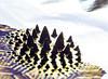 Ferrofluids (Alex Tudorica) Tags: iron suspension fluid magnetic tesla gauss ferromagnetic neodymium ferrofluid