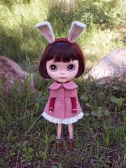 Autumn Bunny Walk set