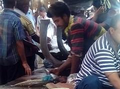 মাছ বাজার (RiddhoRaju) Tags: portrait fish shop market bongo progress business fishmarket bengal bangladesh bangla prosperity bengali shopkeeper htc bangladeshi bangali fishseller jessore anawesomeshot thefishmonger photoghrapy fishphotography catchthedream fishbusiness jessorebangladesh rajudey riddhoraju মাছব্যবসায়ী fishmarketjessore jessorekhulnabangladesh মাছবাজার মাছবিক্রেতা riddhorajuphotography যশোরমাছবাজার যশোরখুলনাবাংলাদেশ
