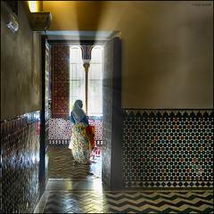(2206) Jove a la finestra (QuimG) Tags: people sevilla andaluca spain interiors sony interiores specialtouch alczardesevilla quimg quimgranell joaquimgranell afcastell obresdart instantsidetalls