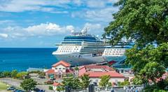 We have company (Andy Johnson Photos) Tags: cruise blue nature seaside nikon ship grenada mygearandme