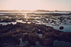 *** (Jean24S) Tags: rocher cte essaouira maroc voyage ocan atlantique fujifilm