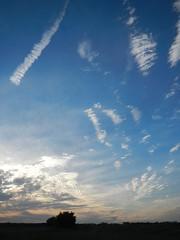 Sky! (Jeannette Greaves) Tags: combining canola hugh jeannette rlfarm