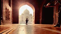 Magnificent Taj (Neelima Muneef) Tags: tajmahal taj agra delhi india wondersoftheworld wonder silhouette sun baby wonderoftheworld