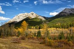 Autumn Rockies (Canon Queen Rocks (1,050,000 + views)) Tags: fall autumn landscape landscapes mountains mountainpeak outdoors canada kananaskis alberta trees