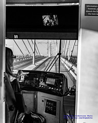 A Black & White Study of a Portland Streetcar on Tilikum Crossing (AvgeekJoe) Tags: bw blackwhite blackandwhite bridgeofthepeople d5300 dslr nikon nikond5300 oregon portland portlandstreetcar tilikumcrossing tilikumcrossingbridgeofthepeople unitedstreetcar willametteriver bridge cablestayedbridge masstransit streetcar transitbridge urbanrail