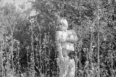 my secret eye. (parkaboy2009) Tags: nude girl outdoor voyeur grass hidden tattoo girlwithtattoos blonde