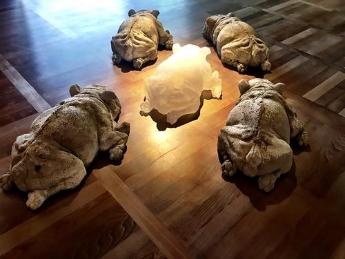 Rudel. Installation im Europäischen Glasmuseum