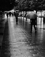A Rainy Day in NYC (noahzeitlin1) Tags: leadin silhouette blackandwhite rain outdoors