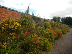 Walled Garden, Floors Castle (turbostar171) Tags: floors castle scotland roxburgh