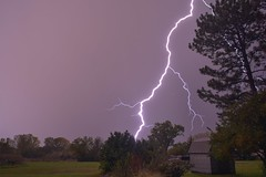 Subsequent Storm (thefisch1) Tags: lightning kansas storm rain tree flower night horizon interesting pattern tendrils thunderstorm branching