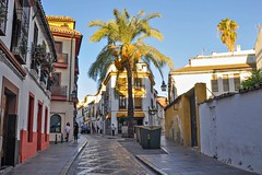 Crdoba (yonca60) Tags: spain cordoba street andalusia summer interestingplaces palmtrees travel streetscape view oldtown
