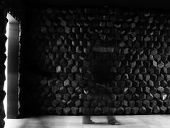 4 (stefanocicala) Tags: people children landscape art photoshop photography human interest nature culture digital lens street blackandwhite bright city white fuji persone mono lines me bw portrait btw lego canon nikon walk person town leica allaperto bianco e nero fotografia piedi fantasma action