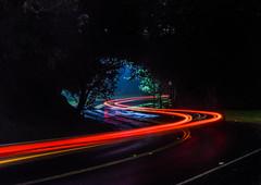 twist through the forest (pbo31) Tags: california bayarea eastbay alamedacounty black dark night color nikon d810 november 2016 fall boury pbo31 oakland lightstream motion traffic roadway red hillerhighlands twist turn merriwood