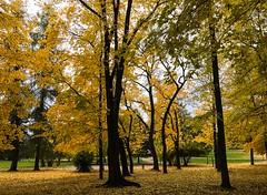 Vigelandsparken (rafareceputi) Tags: vigelandpark frognerpark foliage fall autumn norway oslo