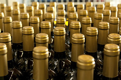 _MG_8149-1 (palli.davide) Tags: vino wine bottiglie bottiglia bottle bottles vetro cantina glass cellar align allineate