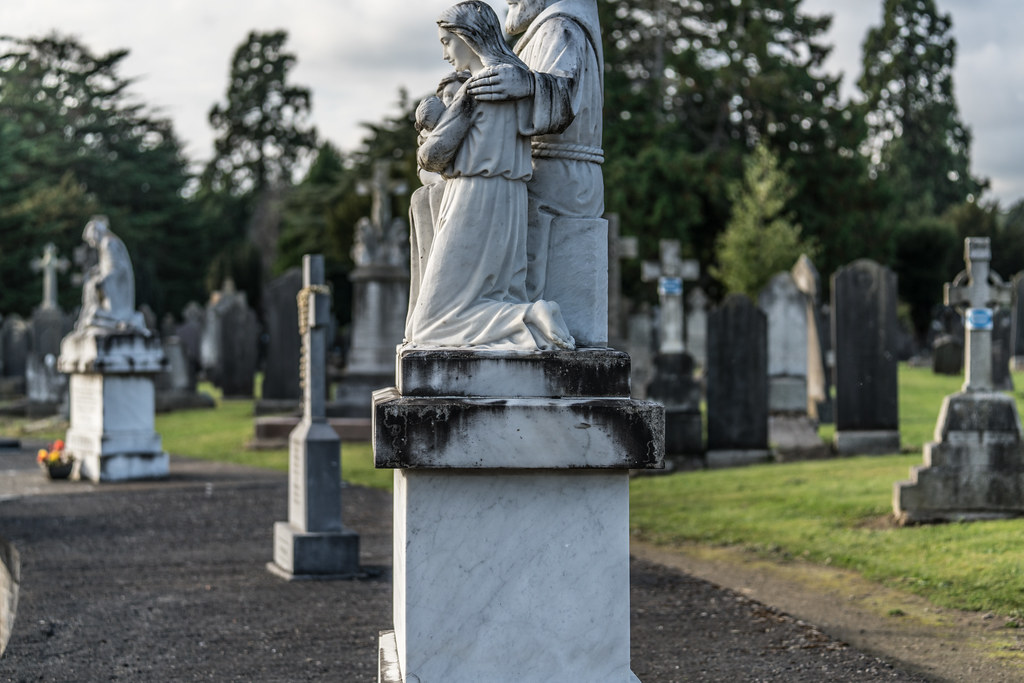 A QUICK VISIT TO GLASNEVIN CEMETERY[SONY F2.8 70-200 GM LENS]-122072
