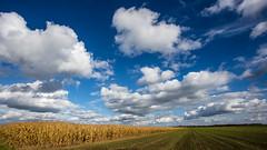 October Sky (++sepp++) Tags: landschaft graben bayern deutschland de landscape bavaria germany wolkig cloudy sunny sonnig feld field