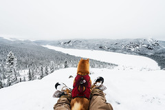 My dog, my friend (Louis Caya) Tags: landscape winter snow mount mountain mountains dog shiba shibainu puppy people tree trees lake white sky friend friends frozen frosty zec national park explore charlevoix quebec qubec canada explorecanada louis caya louiscaya louiscayaphotography leica hike camping