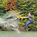 More Gardener's Don't Do It In Wellies - Jake