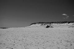 On the Cape (Jaime Merrill) Tags: cape cod beach ocean massachusetts coast eastham
