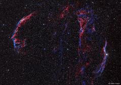 Veil Nebula Complex (Supernova Remnant) (Martin_Heigan) Tags: widefield hargb mosaic veilnebula complex supernova remnant faintlight hydrogen dso deepspace deepsky space telescope phdguiding refractor apo pi pixinsight sgp framingwizard light narrowband ha astroimaging astrophotography southernhemisphere southafrica africa processing platesolving astrometry martinheigan astronomy physics science cygnus caldwell33 caldwell34 ngc6960 networknebula 52cygni stars nebula ngc6992 ngc6995 ngc6979 ic1340 ngc6974 pickeringstriangularwisp westernveil easternveil pickeringstriangle dslr canon 60da calibrationframes stacking mhastrophoto billionsofstars amateurastronomy backyardastronomy cosmos universe nebulae wonders spacephotographedfromearth astrometrydotnet:id=nova1852662 wavelengthoflight hα spectralline 65628nm infrared halpha october2016