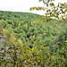 0810 Robert H Treman State Park