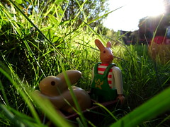 Salut les terriers ! (AGUILA81) Tags: lapin 4451 playmobil toy rabbit conejo jouet campagne campo herbe plastic brouette 123