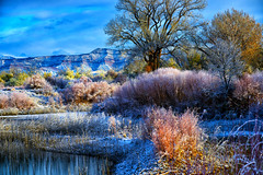 A MORNING WALK ... (Aspenbreeze) Tags: winter cold snow frost mist fog water hoarfrost grandmesa grandjunctioncolorado colorado bevzuerlein nature rural outdoors moonandbackphotography aspenbreeze