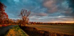 A November Landscape (Peter Leigh50) Tags: leicestershire west langtons langton landscape meridian east midland trains sunshine late afternoon november