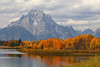 oxbowbend1 (laelia74) Tags: wyoming grandtetons fall nature outside hiking mountains