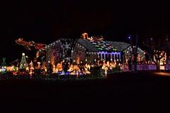 Clark W. Griswald? (slammerking) Tags: christmaslights wichitaks festival decorations decor coloredlights lightshow lights christmas