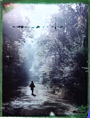 (denzzz) Tags: portrait polaroid fuji fp100c45 negativescan negativereclaim filmphotography analogphotography wista45dx 4x5 largeformat fujinona 240mm forest expired