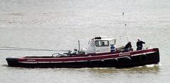 Dancha @ Gallions Reach 17-08-15 (AJBC_1) Tags: uk england london boat ship unitedkingdom vessel tugboat tug riverthames pontoon eastlondon gallionsreach northwoolwich epis newham londonboroughofnewham dancha dlrblog ajc eelpieislandslipwaysltd