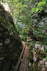 IMG_2758 (Vesur) Tags: path trail emen екопътека каньон емен ждрело