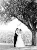 Love Tree (fineart_weddings) Tags: wedding love fine hochzeit castello baum liebe kuss eislingen hochzeitsfotos hochzeitsfotograf hochzeitsreportage donzdorf fineartweddings