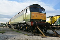 "BR Two-Tone Green Class 47/8, 47830 / D1645 & Freightliner Class 66/5, 66566 (37190 ""Dalzell"") Tags: green gm br shed leeds spoon brush fred depot duff greenyellow generalmotors sulzer twotone freightliner britishrailways class66 midlandroad class47 type4 47830 66566 47649 class665 class478 47061 d1645 celebrityrepaint"