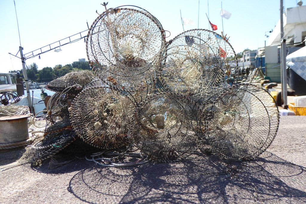 Coastal nets